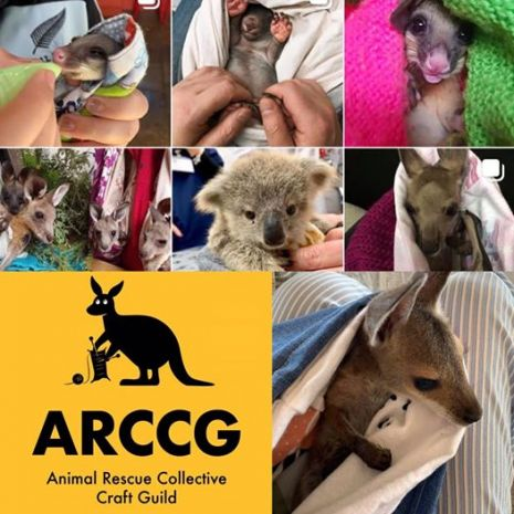 könyvelés Volunteers around the world are sewing pouches for animals affected by Australian bushfires