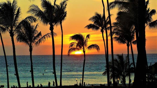 könyvelés Hawaii Visitors Can Now Score a Free Hotel Night in Exchange for Volunteer Work